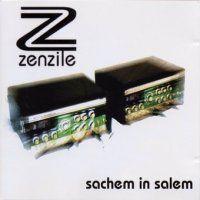 Zenzile   Discographie 1996 2006 (10 albums) preview 0